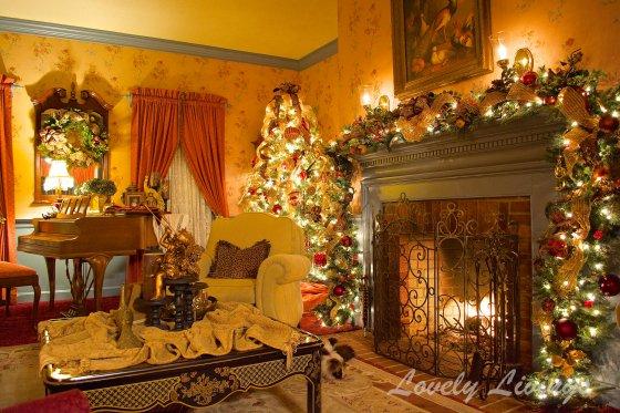Christmas Living room 2013