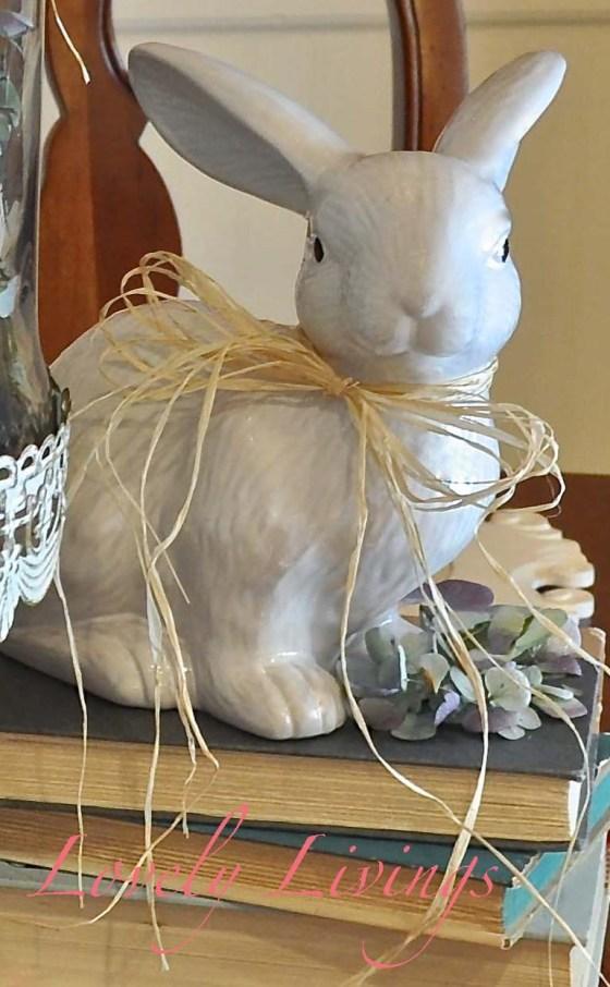 Bunny on books