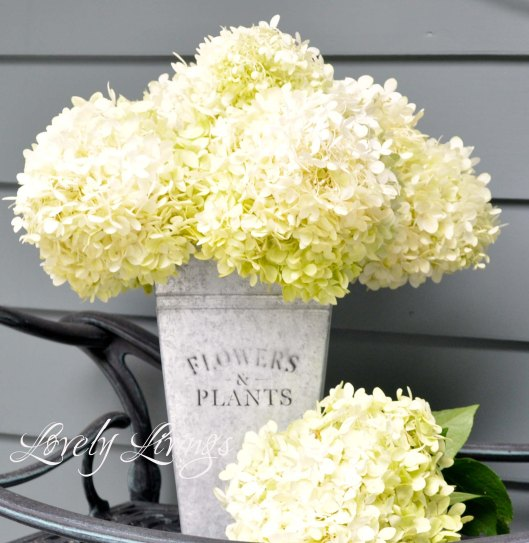 beautiful fall hydrangea arrangement