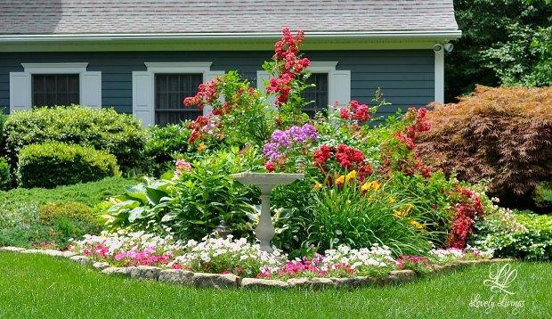 Lovely Livings Yard