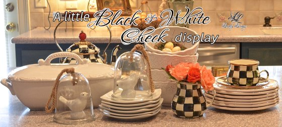 Black and White Check Display