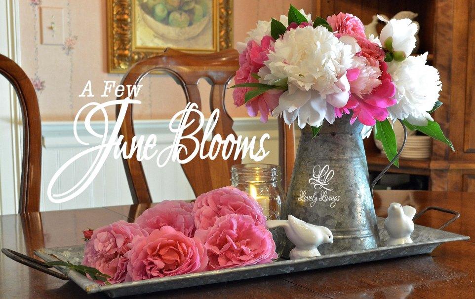 June Blooms