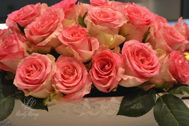 Just Because Roses