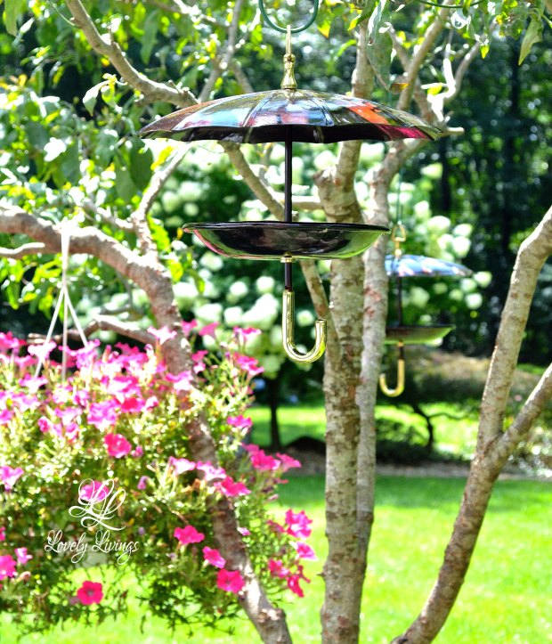 Lovely Umbrella Bird Feeders