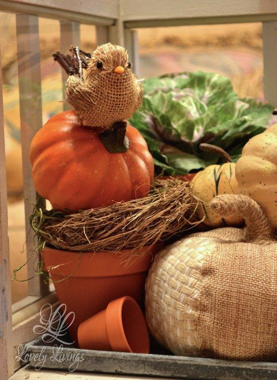 A Fall Terrarium