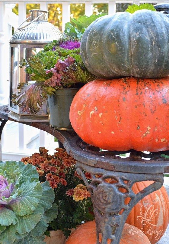 Fall Deck Display
