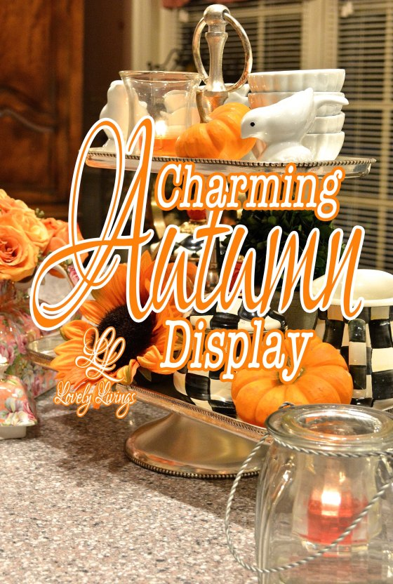 Charming Autumn Display